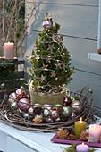 Weihnachts-Arrangement mit Zuckerhutfichte und Christbaumkugeln