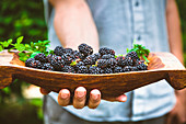 A person holding fresh blackberries in a wooden bowl