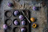 Pflaumen (Sorte: Bleue de Belgique) auf Vintage Muffinblech