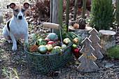 Korb mit Christbaumkugeln als weihnachtliche Deko im Garten