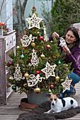 Lebende Fichte als Weihnachtsbaum geschmückt