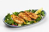 Grilled fish fillets on salad