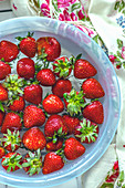 Fresh strawberries in a water bowl
