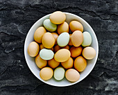 Various coloured eggs in a bowl
