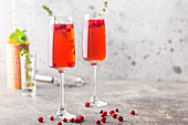 Colorful Red exotic alcoholic cocktail in champagne glasses over gray background