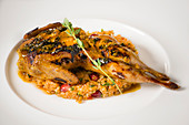 A grilled quail on bulgur wheat