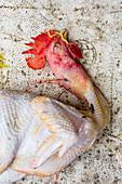 Freshly butchered chicken (Hanoi, Vietnam)