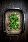 Würzpflanze mit Anisgeschmack aus Mittel- und Südamerika, in Vintage Metallschale
