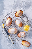 Madeleines with lemon curd and icing sugar, light background