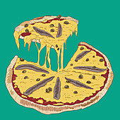 Pizza with anchovies, sliced (illustration)