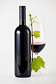 A bottle of red wine, a glass of red wine and a vine sprig