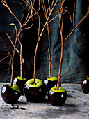Zombie Toffee Apples
