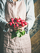 Female farmer wearing pastel linen apron and shirt holding bunch of fresh ripe radish with leaves in her hands