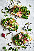 Raddish, watercress and cream cheese open sandwich