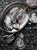 Fresh fish with coarse salt and ice on a tray against a silver mosaic background
