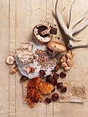 An autumnal still life with mushrooms, chestnuts and antlers (top view)