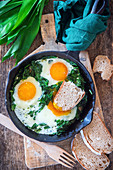 Fried eggs with wild garlic