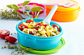 Colourful tortellini salad in a Tupperware bowl with tomatoes and fresh herbs