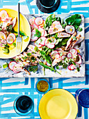 Spring radish salad with chicken breast