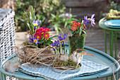 Frühlings-Arrangement mit Krokussen und Primeln