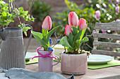 Tulpe 'Red Paradise' als Tischdekoration
