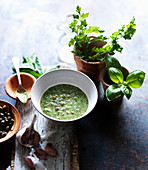 Salsa verde with parsley, basil and capers