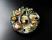 Verschiedene Sashimi serviert in Muschelschalen auf Eis (Japan)