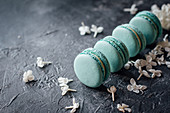 Blue macarons and white lilacs