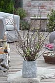 Barbarazweige in grauer Vase auf der Terrasse