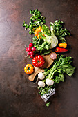 Variety of wet raw fresh organic colorful vegetables tomatoes, radish with leaves, fennel, paprika, salt, pepper, wooden chopping board