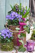 Frühlings-Arrangement mit Glockenblumen und Hyazinthen