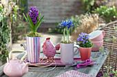 Hyazinthe, Netziris und Glockenblume als Tischdeko