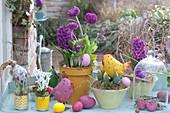 Topf Arrangement mit Frühlingsblumen