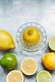 Lemons and limes with a citrus squeezer