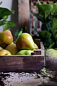 Pears in a wooden box