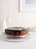 Chocolate and Peacan Torte
