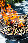 Pinecones burning on a barbecue