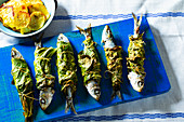 Grilled sardines in savoy cabbage