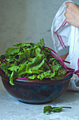 Beetroot leaves in a salad bowl