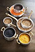 Lentil Variety