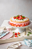 Cake made with strawberry mousse and genoise sponge with fresh strawberries