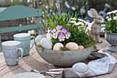Bepflanzte Schale als Oster - Tischdeko