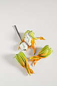 Raw courgette flowers with a ricotta cream filling
