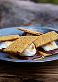 Smores on a plate