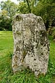 Carreg Pumsaint standing stone, Dolaucothi Gold Mines, UK