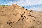 Sandune erosion after storm surge
