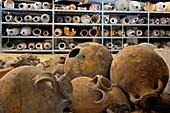 Underwater archaeology, Arles, France