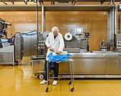 Preparing prototype milk-based food products