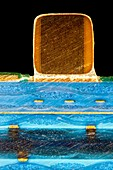 Ceramic capacitor on circuit board, light micrograph