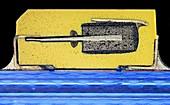 Tantalum capacitor, light micrograph